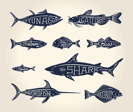 白い背景の上の入れ墨のスタイルの名前を持つ魚のヴィンテージのイラスト  イラスト・ベクター素材
