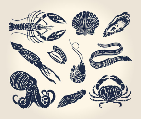 Vintage illustration of crustaceans, seashells and cephalopods over white background with names