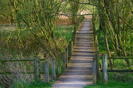 Mystery walkway Stock Photo - 13369103