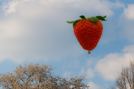 inflation basket: hot air balloon in the shape of a strawberry