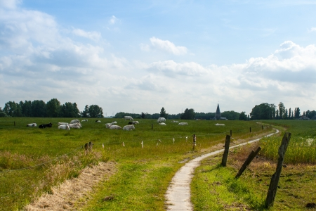 walkway for hiking on the countryside photo