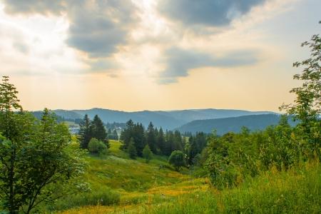 Landschaft im Schwarzwald, Deutschland Feldberg