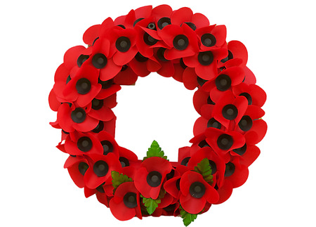 Poppy day great remembrance war world flanders  photo