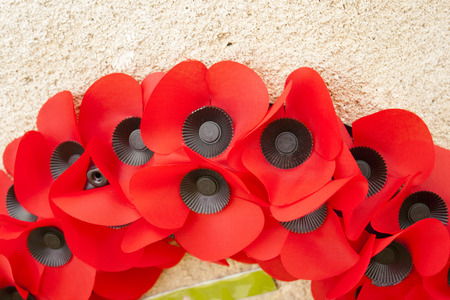 Poppy day great remembrance war world flanders  Stock Photo