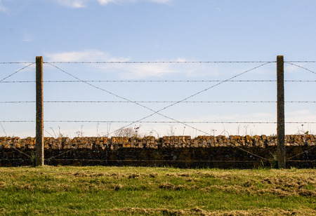 ypres: barbed wire fence Trenches of Death flanders Dixmude great world war