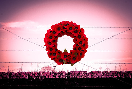 ypres: Background poppy WW1 barbed wire and sandbags world war Stock Photo
