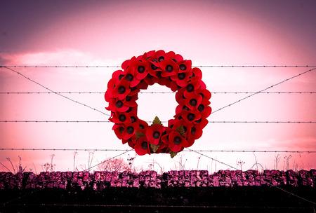 Background poppy WW1 barbed wire and sandbags world war Stok Fotoğraf
