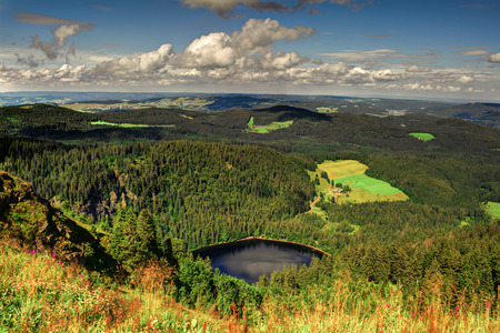 forest wood: Panorama landscape view over black forest Germany