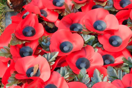 world war 1: Poppy remembrance anzac day world war 1