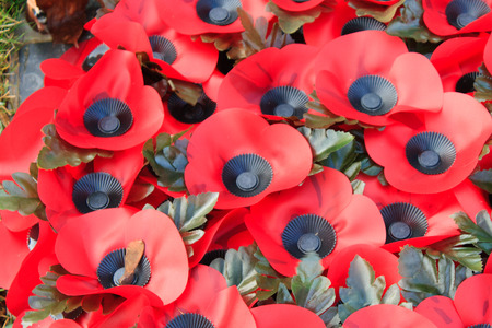 anzac: Poppy remembrance anzac day world war 1