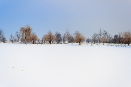 snowy lake with trees in the background piestany slovakia