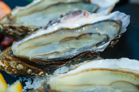 fresh oysters straight from the sea to market in France Stok Fotoğraf