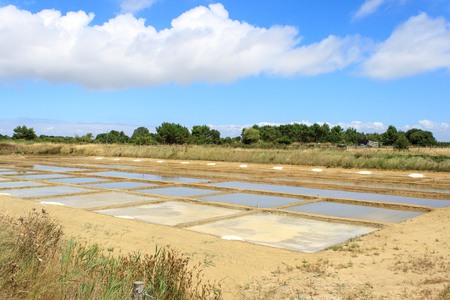 salt water from drying on the island oleron france