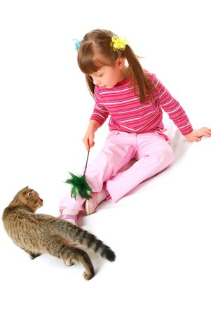 Little girl playing with kitten isolated on white background photo