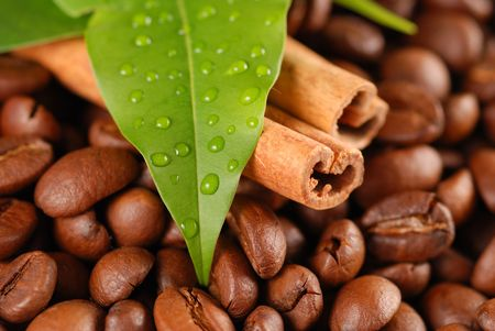 Coffee beans and cinnamon with leaves photo