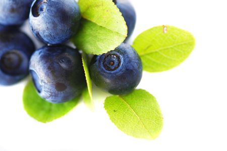 Blueberries over white background. Shallow depth of field. photo