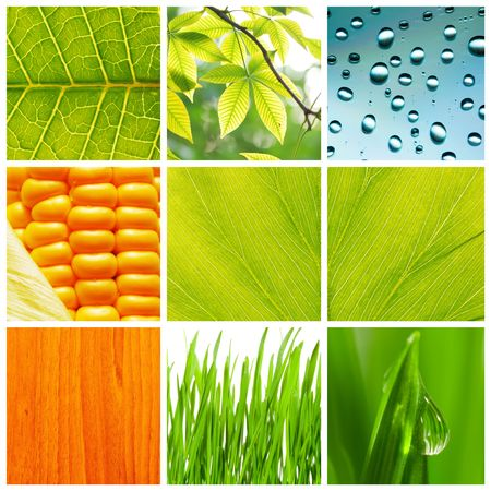 Collage made of different nature backgrounds photo