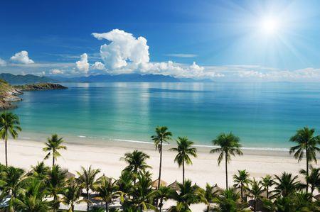 beach scene: Beach Scene, Tropics, Pacific ocean