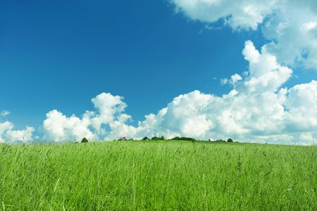 Green landscape with cloudy sky Stock Photo - 5502908