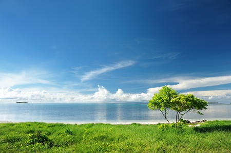 Beautiful wild beach at remote island, Philippines Stock Photo - 8829836