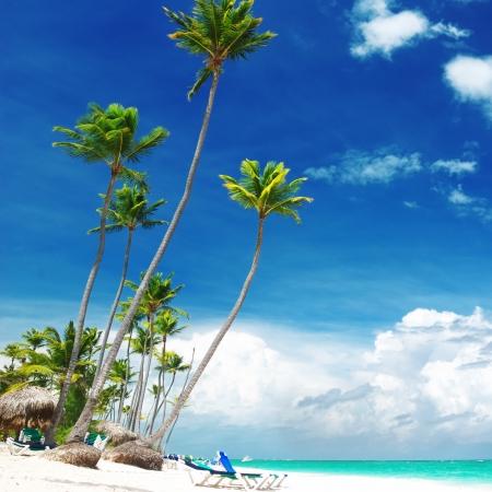 dominican republic: Beautiful caribbean beach in Dominican Republic Stock Photo