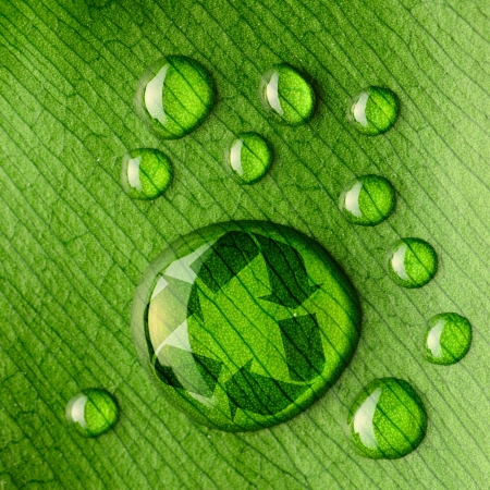 Beautiful water drops on a leaf close-up and recycle logo photo