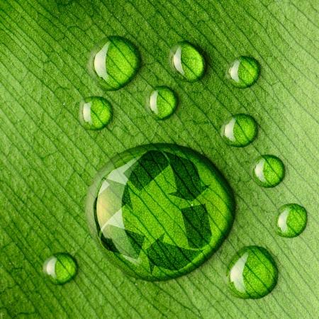 reciclar: Hermoso espejo de agua cae en un logotipo de la hoja en primer plano y de reciclaje Foto de archivo