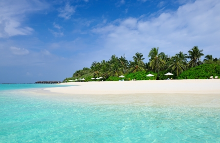 Beautiful island beach at Maldives photo