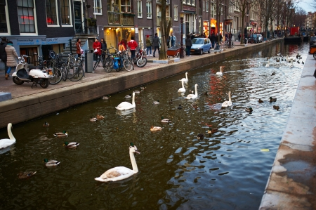 AMSTERDAM, NETHERLANDS - APRIL 1 2013: Amsterdam street at spring, April 1, 2013