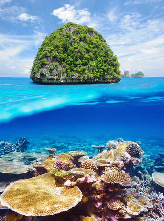Beautiful uninhabited island in Thailand with coral reef bottom underwater and above water split view photo