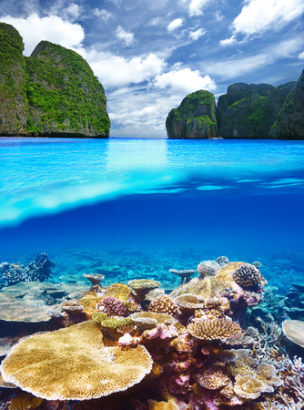 crystal clear: Beautiful lagoon with coral reef bottom underwater and above water split view