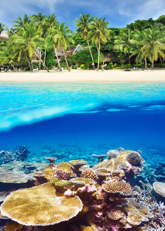 Beautiful beach with coral reef bottom underwater and above water split view photo