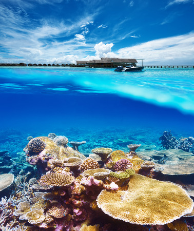 beach cruiser: Beautiful beach with coral reef bottom underwater and above water split view Stock Photo
