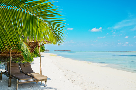 ari: Beautiful beach at Maldives with chaise-lounges