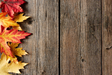 Autumn maple leaves over old wooden background with copy space photo