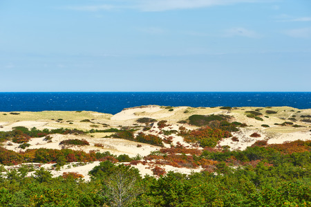 cape cod: Landscape with sand dunes at Cape Cod, Massachusetts, USA.
