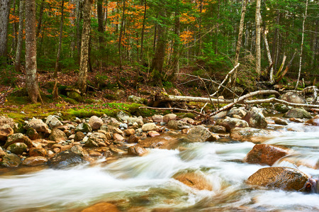 national forest: Sabbaday Falls in White Mountain National Forest, New Hampshire, USA.