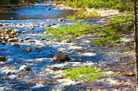 hampshire: Swift River in White Mountain National Forest, New Hampshire, USA. Stock Photo