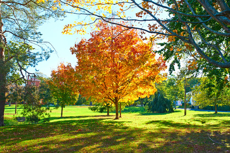 suburban neighborhood: Suburban neighborhood at north USA in autumn Stock Photo