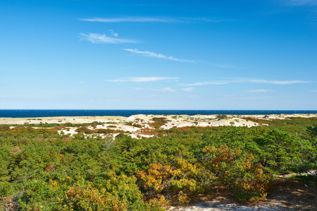 cielo azul: Paisaje en Cape Cod, Massachusetts, EE.UU..