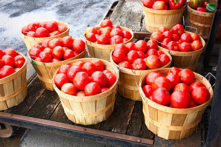 tomate: Fresh ripe tomatoes at farmers market Banque d'images