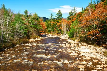 national forest: R�o r�pido en el oto�o en el Bosque Nacional White Mountain, New Hampshire, EE.UU.. Foto de archivo