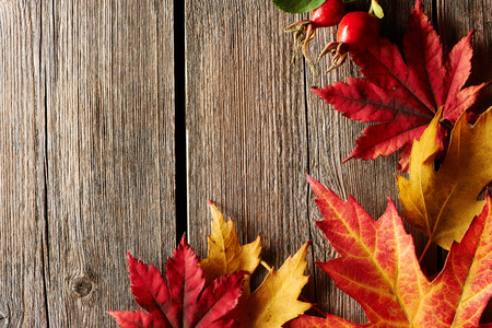 hojas antiguas: Arce Hojas de otoño sobre fondo de madera vieja, con copia espacio