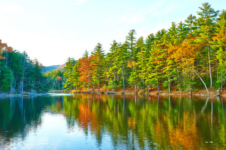 Teich im White Mountain National Forest, New Hampshire, USA.