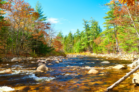 creek: Swift River at autumn in White Mountain National Forest, New Hampshire, USA.