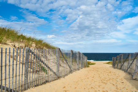 Path way to the beach at Cape Cod, Massachusetts, USA. 免版税图像