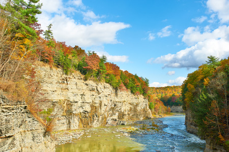 gorge: Autumn scene landscape of river and forest at Letchworth State Park