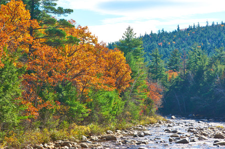 hampshire: Swift River at autumn in White Mountain National Forest, New Hampshire, USA.