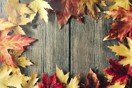 hojas antiguas: Autumn maple leaves over old wooden background with copy space Foto de archivo