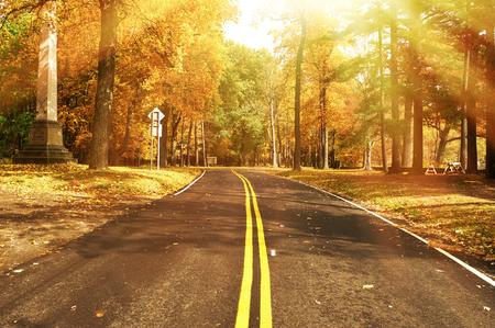 Autumn: Escena del otoño con el camino en el bosque en el parque estatal Letchworth
